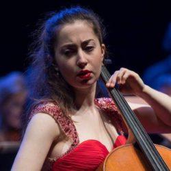 Elia Cohen-Weissert