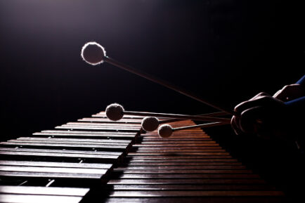 The hands of a musician playing the marimba in dark tones closeup
